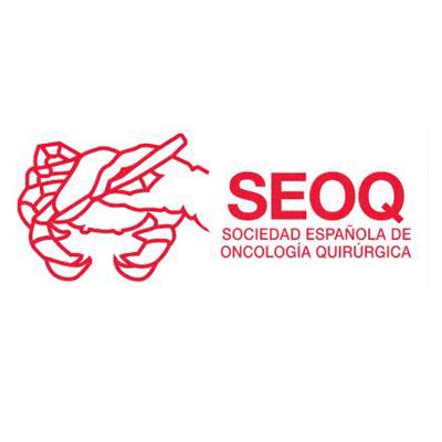 SOCIEDAD ESPAÑOLA DE ONCOLOGIA QUIRURGICA (SEOQ)