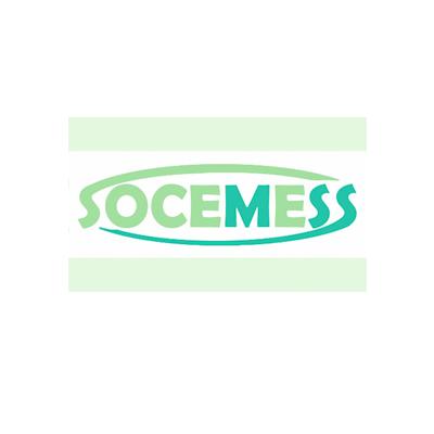 SOCIEDAD CIENTIFICA ESPAÑOLA DE MEDICINA EVALUADORA EN EL AMBITO DE LA SEGURIDAD SOCIAL (SOCEMESS)