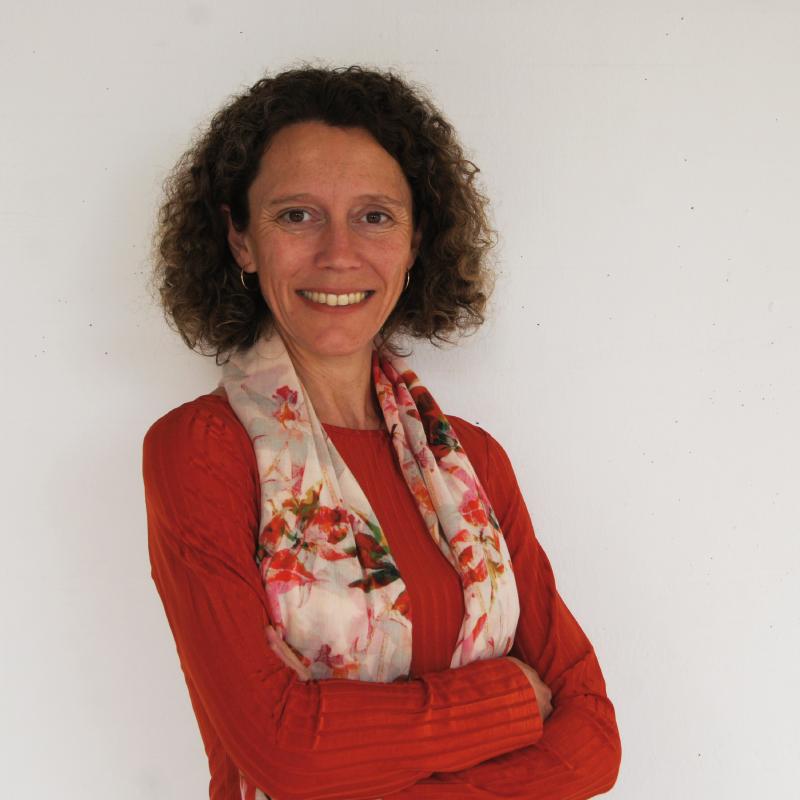 Dra. María Teresa Lozano Palencia